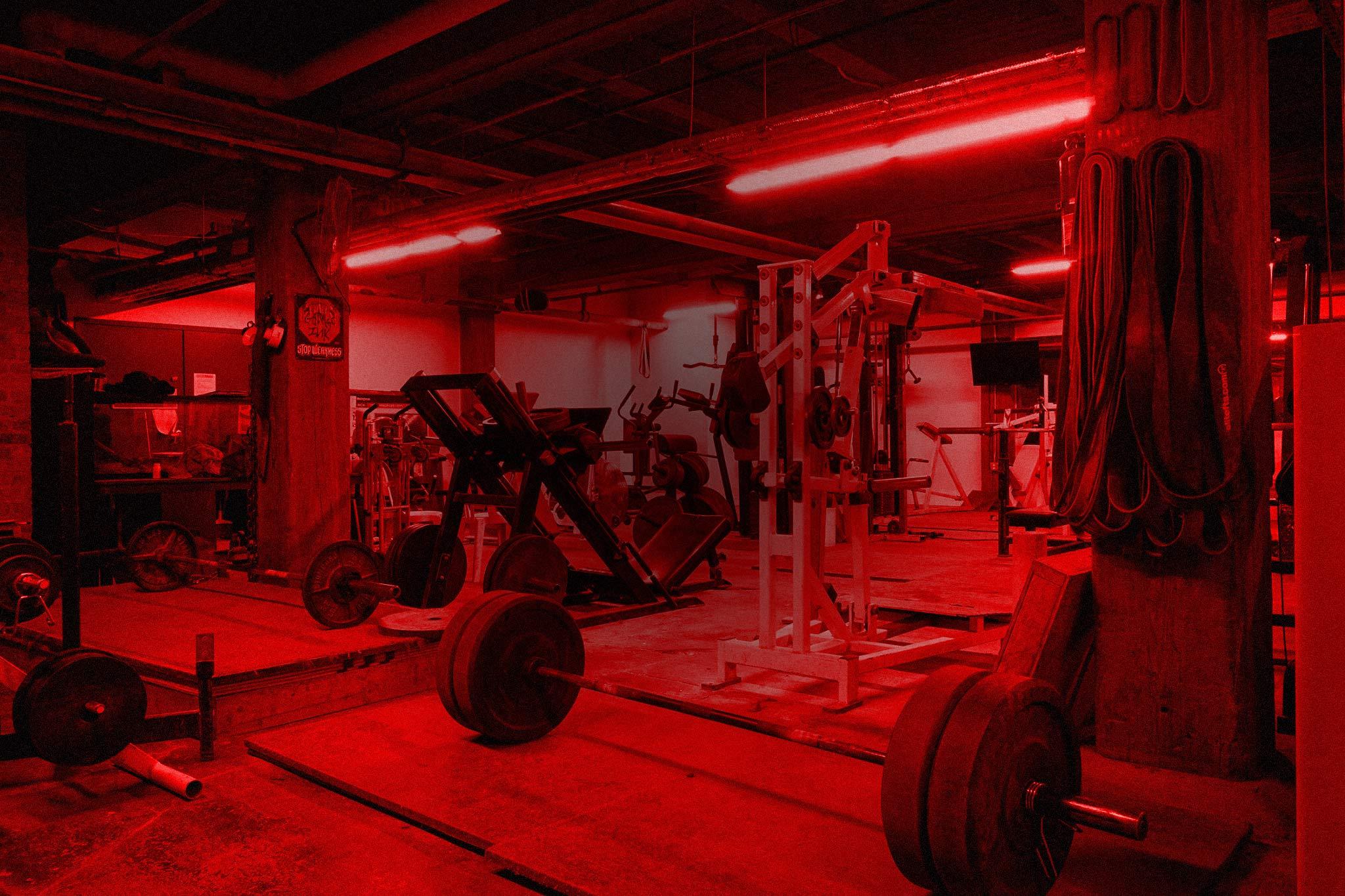 Photo of Lance's Gym
